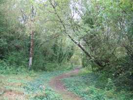 nature trail at amberley museum west sussex