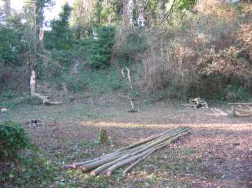 the galde cleared for the green wood worker group and pole lathe demonstrations